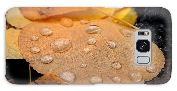 Aspen Leaf With Water Drops Galaxy Case