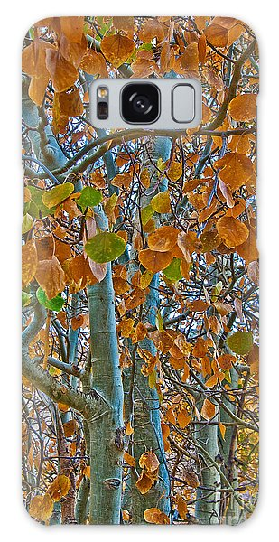 Galaxy Case featuring the photograph Aspen Leaves In The Fall by Mae Wertz