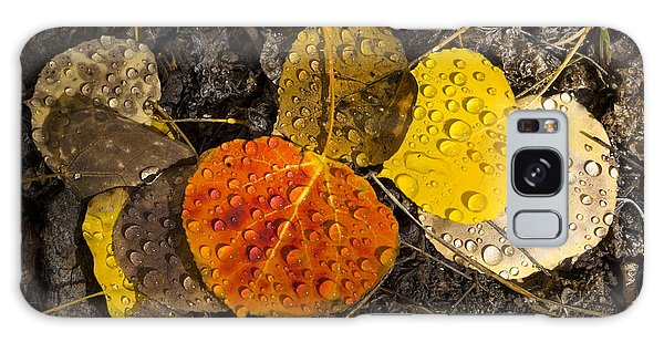 Aspen Leaves On Bishop Creek Galaxy Case