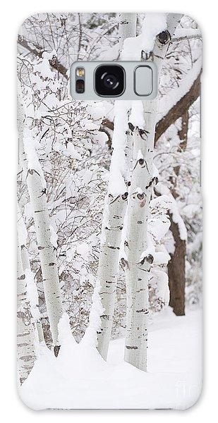 Aspen Snow Galaxy Case