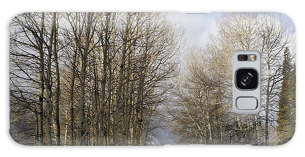 Aspen Trees Along Snowy Colorado Path Galaxy Case by Loriannah Hespe
