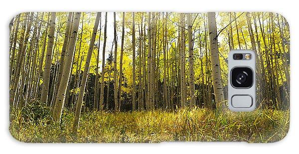 Aspen Trees Colorado Galaxy Case