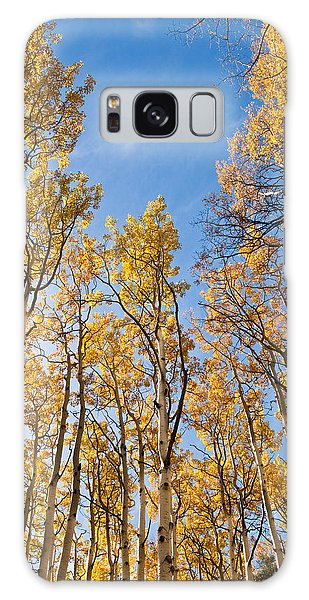 Aspen Trees In The Fall Galaxy Case by Jeff Goulden