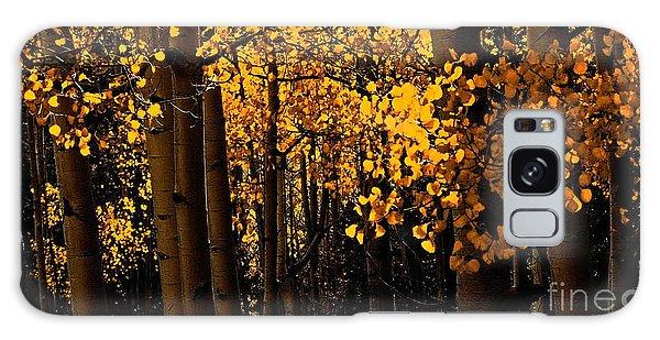 Aspen Woods Galaxy Case