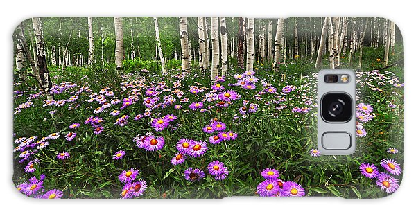 Aspens And Asters Galaxy Case