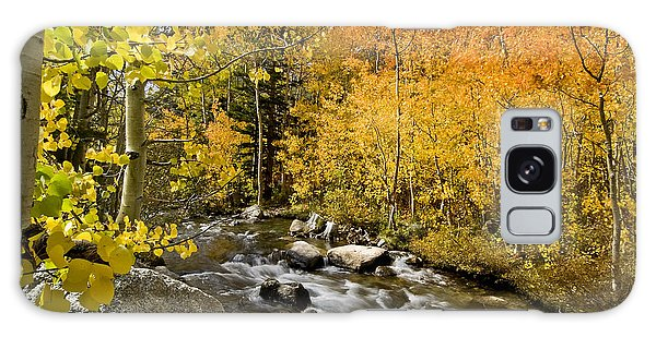 Aspens At Bishop Creek Galaxy Case