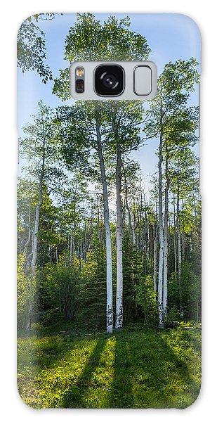 Aspens At Sunrise 1 - Santa Fe New Mexico Galaxy Case