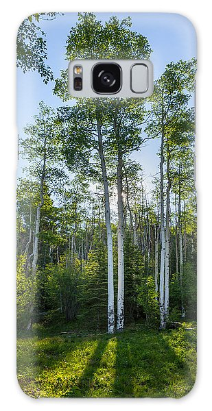 White Mountain National Forest Galaxy Case - Aspens At Sunrise 1 - Santa Fe New Mexico by Brian Harig