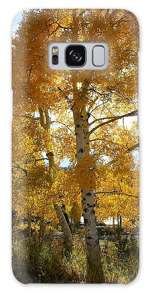 Aspen's Gold Galaxy Case