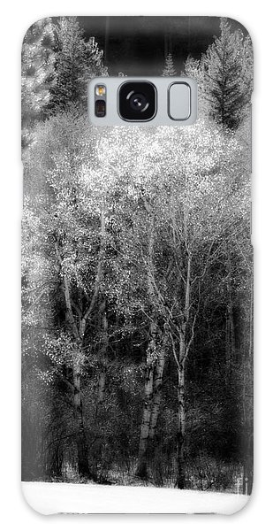 Aspens In Morning Light Bw Galaxy Case