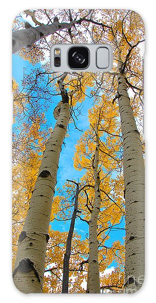 Aspens Galaxy Case