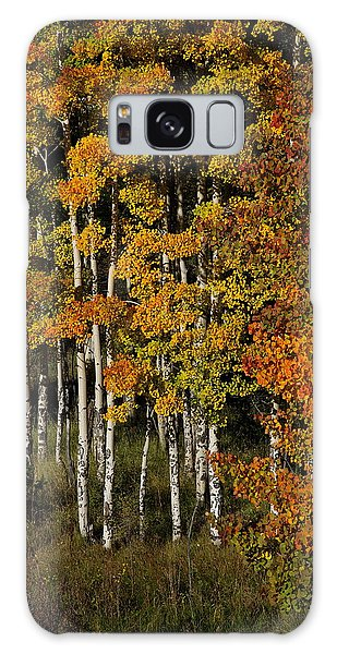 Aspens On Bobcat Pass Galaxy Case
