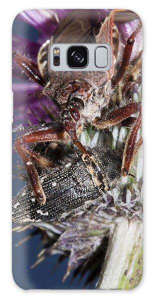 Assassin Bug Preying On Beetle Galaxy Case