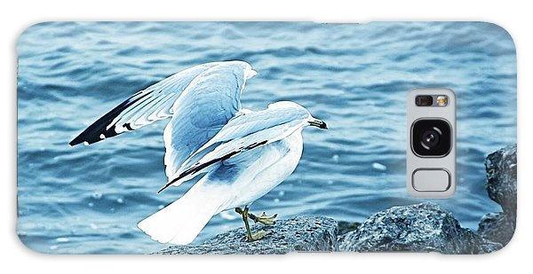 At The Waters Edge Seagull Galaxy Case