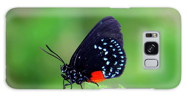Atala Butterfly Galaxy Case