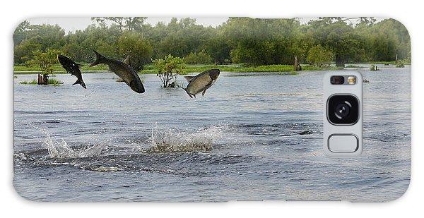 Atchafalaya Swamp Jumping Fish Galaxy Case