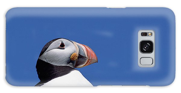 Atlantic Puffin In Breeding Colors Galaxy S8 Case