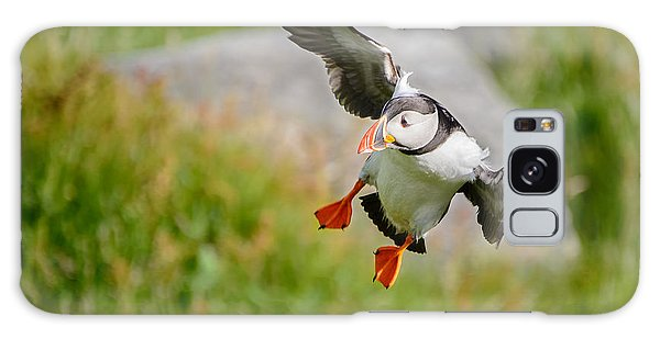 Atlantic Puffin, Incoming.... Galaxy Case