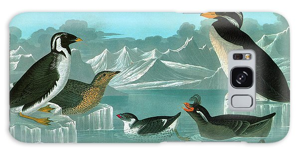 Audubon Auks Galaxy Case