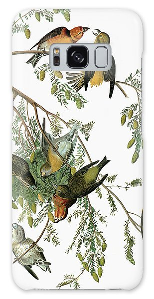 Audubon Crossbill Galaxy Case