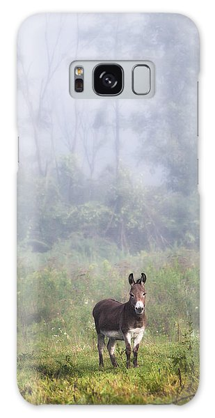 August Morning - Donkey In The Field. Galaxy Case