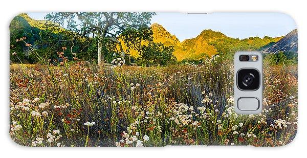 Santa Monica Galaxy Case - August Sunrise In Malibu Creek State Park by Joe Doherty