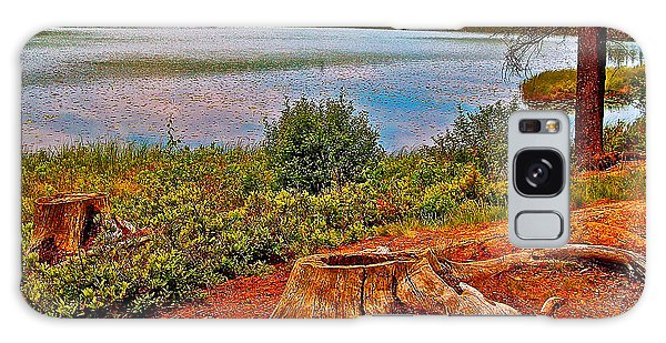 Aunt Betty Pond In Acadia National Park-maine  Galaxy Case
