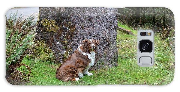 Aussie Tree Galaxy Case