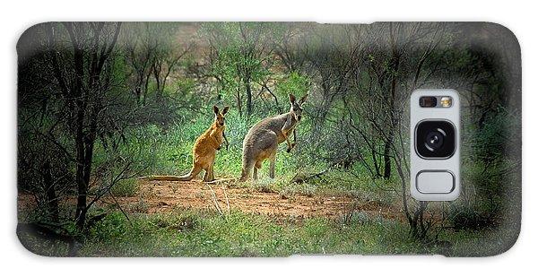Australia, New South Wales, Broken Galaxy Case