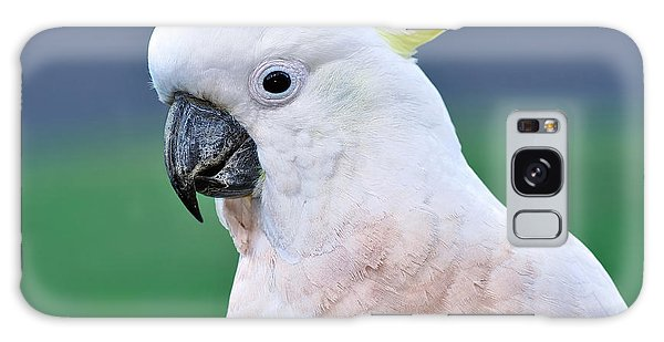 Australian Birds - Cockatoo Galaxy Case by Kaye Menner
