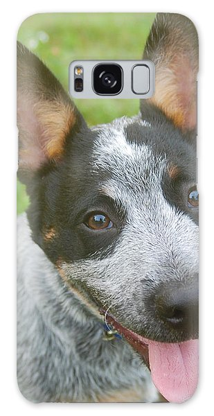 Australian Cattle Dog Galaxy Case