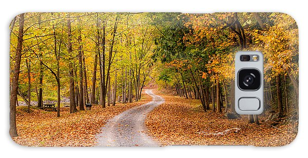 Autum Path Galaxy Case by Melinda Ledsome