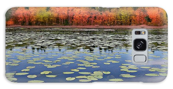 Autumn Across The Pond Galaxy Case by Barbara S Nickerson