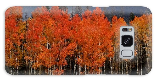 Autumn Aspen Galaxy Case by Brenda Pressnall
