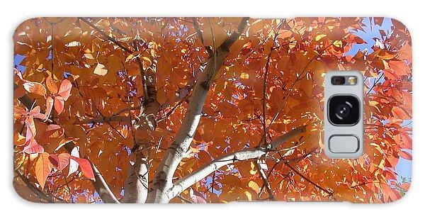 Autumn Aspen Galaxy Case