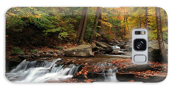 Autumn At Ricketts Glen Galaxy Case by Dan Myers