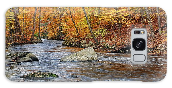 Autumn At The Black River Galaxy Case by Dave Mills