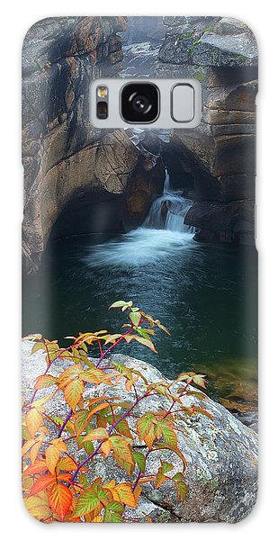 Autumn At The Grotto Galaxy Case