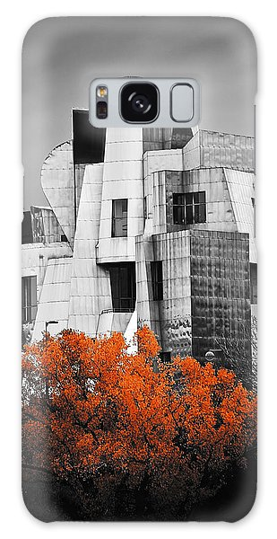 autumn at the Weisman Galaxy Case by Matthew Blum