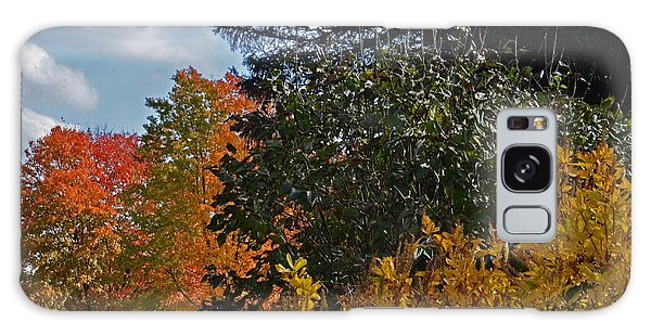 Autumn Beauty Galaxy Case by Judy Wolinsky