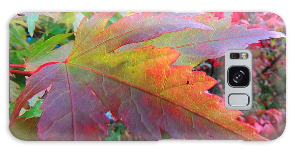 Autumn Beauty Galaxy Case by Karen Horn
