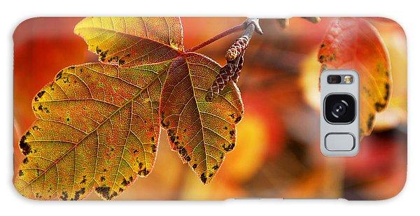 #autumn Galaxy Case by Becky Furgason