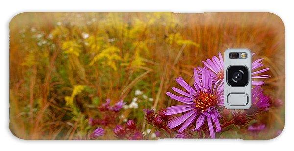 Autumn Blush Galaxy Case by Tim Good