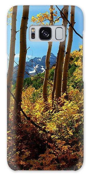 Autumn Brilliance 2 Galaxy Case
