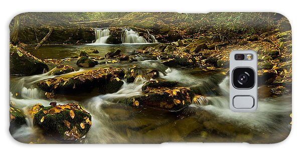 Autumn By The Creek. Galaxy Case