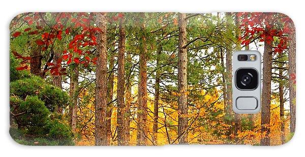 Autumn Canvas Galaxy Case
