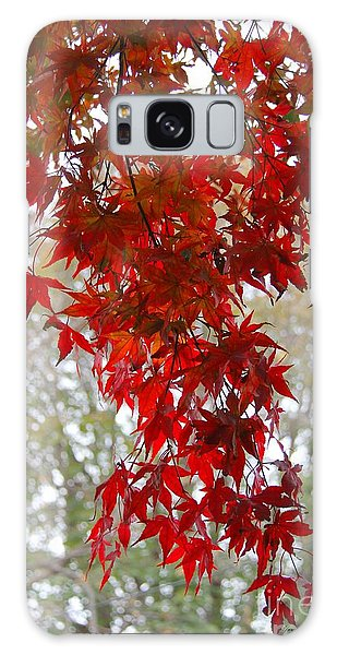 Autumn Curtain  Galaxy Case