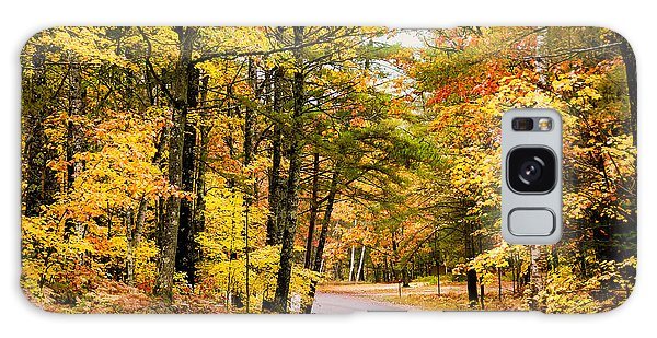 Autumn Colors - Colorful Fall Leaves Wisconsin - II Galaxy Case