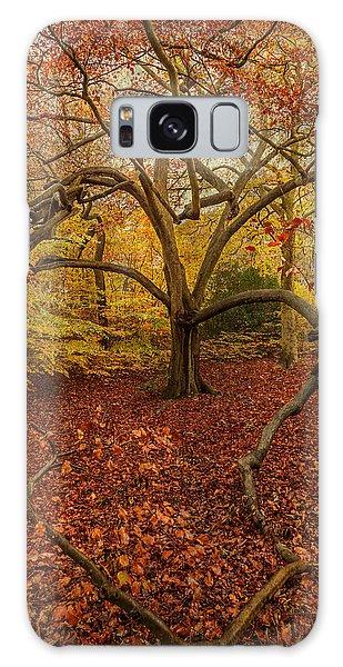 Autumn Colours Galaxy Case