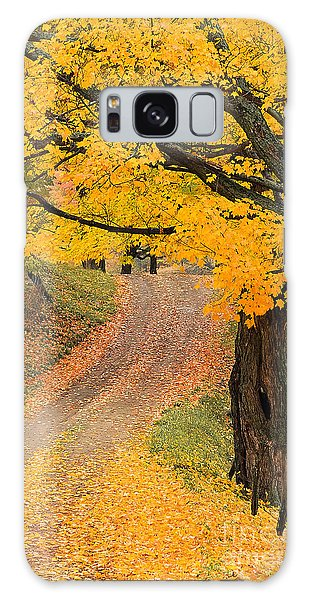 Autumn Country Road Galaxy Case